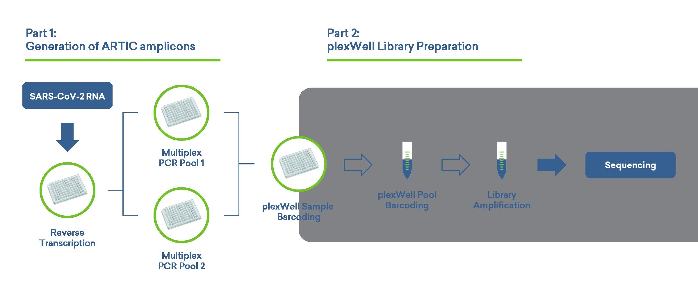 artic-plexwell-sars-cov-2-workflow